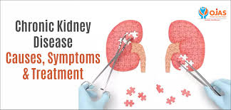 Persistent Kidney Disease Treatment Diseases
